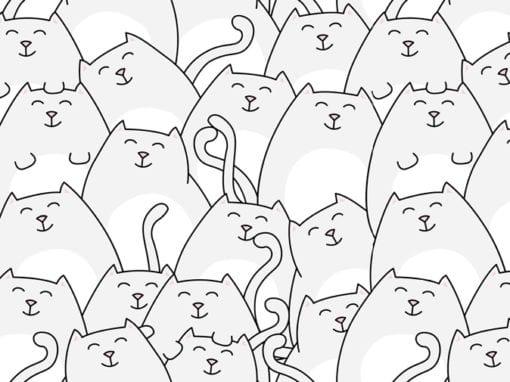 Stoffenpatroon katten